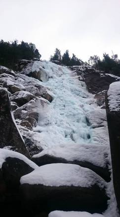 Shannon Falls is freezing into a giant snow cone (Joseph Wong)