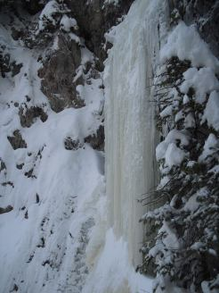 Steep ice on the final pitches of Stoner Falls (Steve Janes)